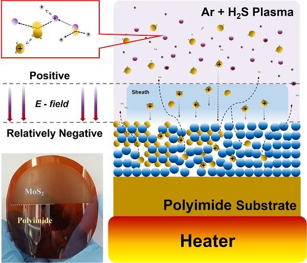 플라즈마 화학기상증착법으로 합성한 이황화몰리브덴 (MoS2) 박막 및 합성 과정 모식도